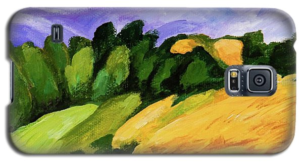 Galaxy S5 Case featuring the painting Windy by Igor Postash