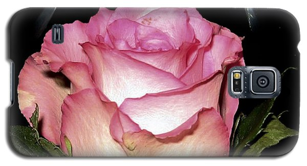 Wine And A Rose Galaxy S5 Case