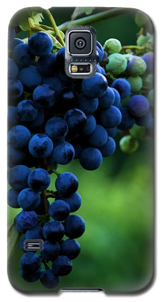 Wine On A Vine Galaxy S5 Case