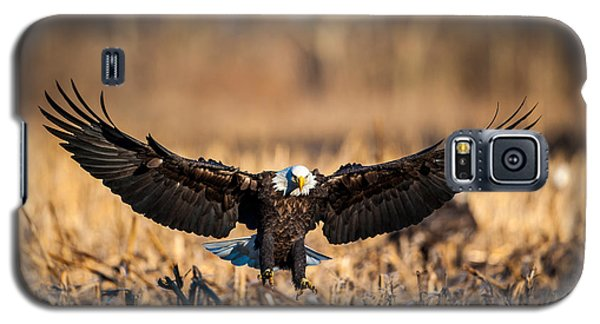Wing Span Galaxy S5 Case