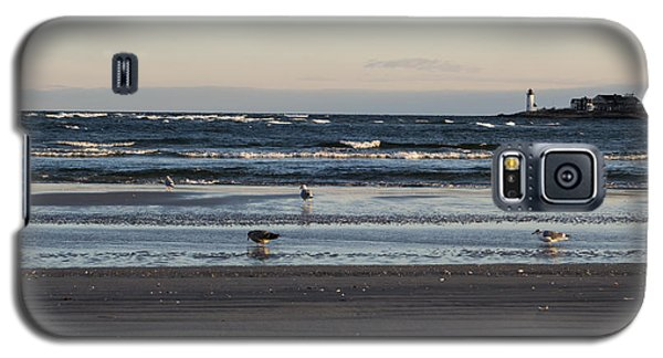 Wingaersheek Beach Seagulls At Sunrise Galaxy S5 Case