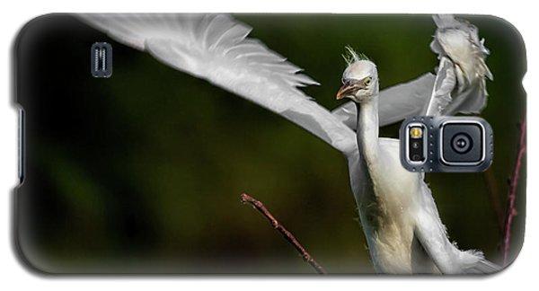 Winged Galaxy S5 Case