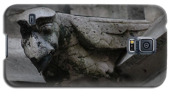 Galaxy S5 Case featuring the photograph Winged Gargoyle by Christopher Kirby