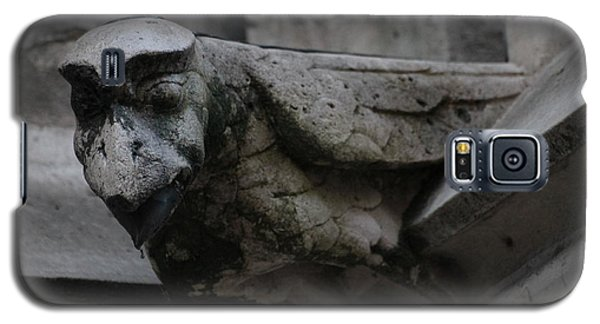Winged Gargoyle Galaxy S5 Case