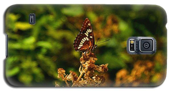 Wingo Butterfly Galaxy S5 Case