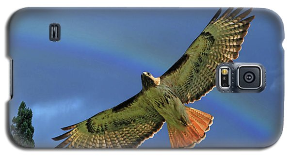 Wings 2 Galaxy S5 Case by Donna Kennedy