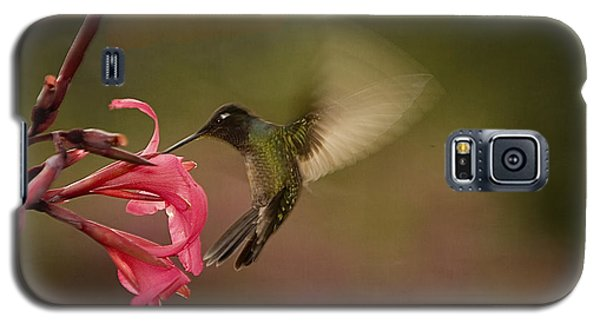 Galaxy S5 Case featuring the photograph Wings In Motion 3 by Anne Rodkin