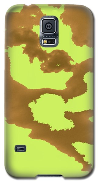 Galaxy S5 Case - Wings by Orphelia Aristal