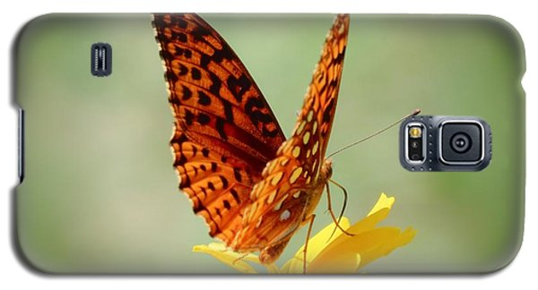Wings Up - Butterfly Galaxy S5 Case