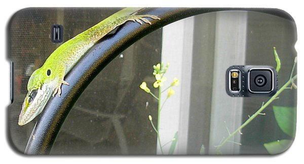 Galaxy S5 Case featuring the photograph Winning Anole by Jeanne Kay Juhos