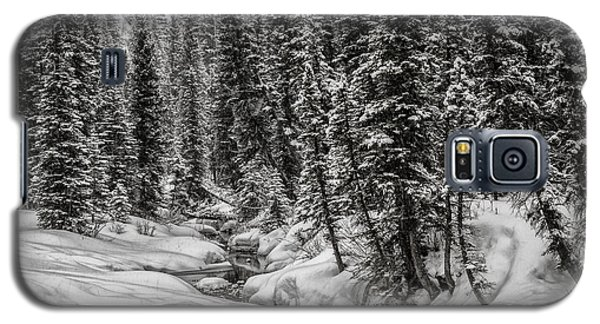 Winter Alpine Creek II Galaxy S5 Case