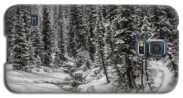 Winter Alpine Creek II Galaxy S5 Case