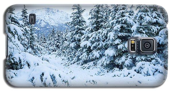 Winter Arrives Galaxy S5 Case