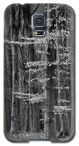 Winter Beech Galaxy S5 Case by Inge Riis McDonald