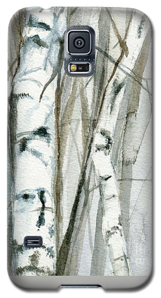 Winter Birch Galaxy S5 Case by Laurie Rohner