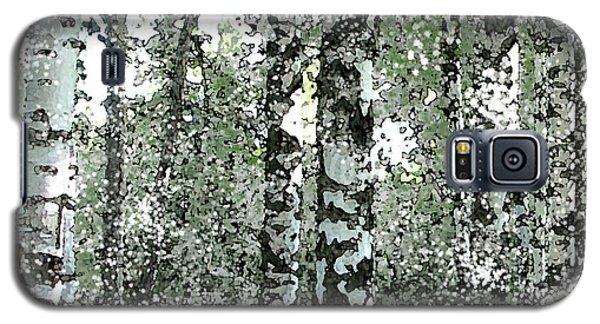 Winter Birches Galaxy S5 Case