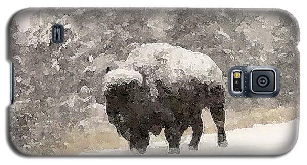 Winter Bison Galaxy S5 Case