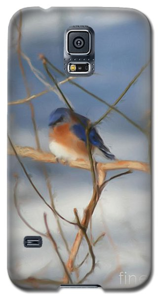 Galaxy S5 Case featuring the painting Winter Bluebird Art by Smilin Eyes  Treasures