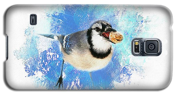 Galaxy S5 Case featuring the photograph Winter Bluejay by Darren Fisher