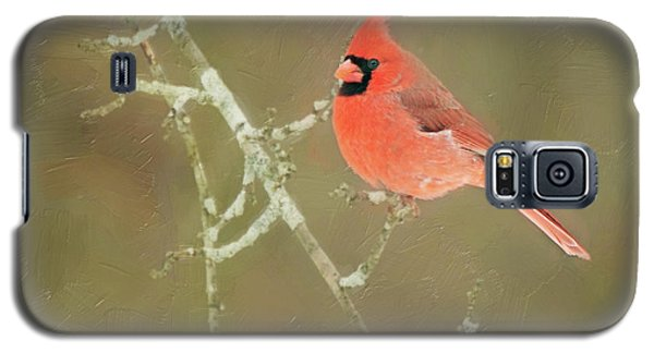 Winter Cardinal Galaxy S5 Case