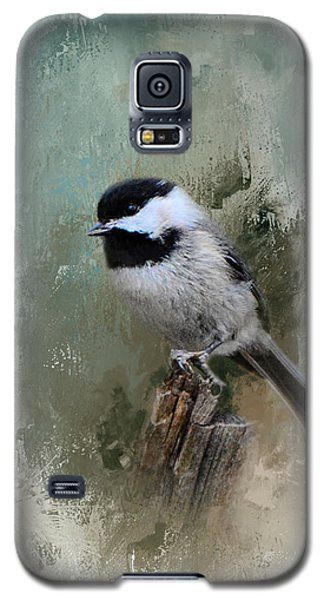 Winter Chickadee Galaxy S5 Case by Jai Johnson
