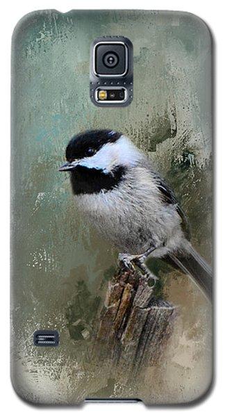 Winter Chickadee Galaxy S5 Case