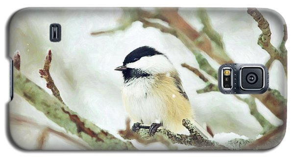Winter Chickadee Galaxy S5 Case