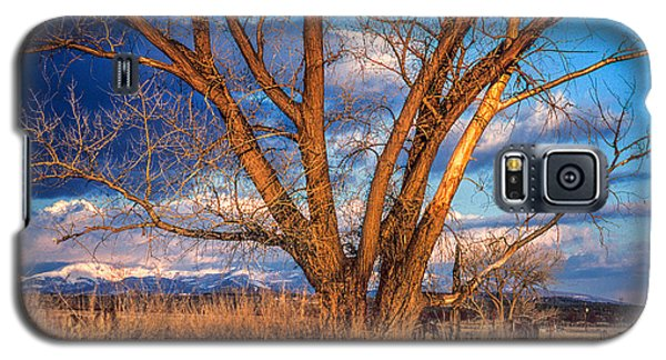 Winter Cottonwood Ranch Landscape Colorado Galaxy S5 Case