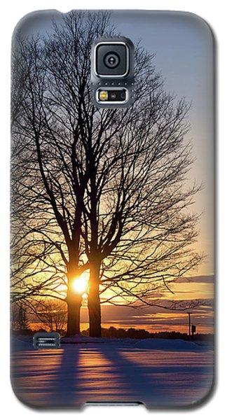 Winter, Crystal Spring Farm, Brunswick, Maine -78592 Galaxy S5 Case