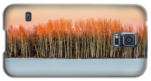 Winter Galaxy S5 Case
