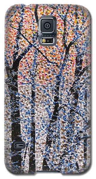 Winter Dawn  Galaxy S5 Case