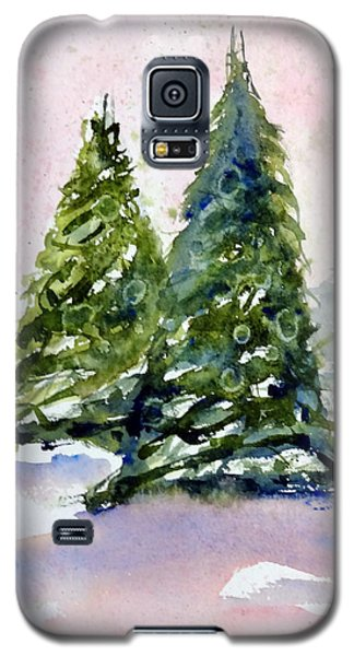 Winter Delight Galaxy S5 Case