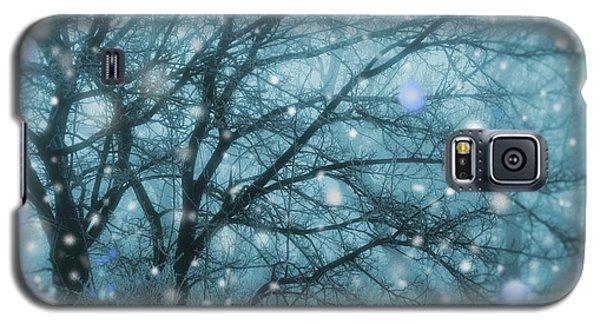 Winter Evening Snowfall Galaxy S5 Case