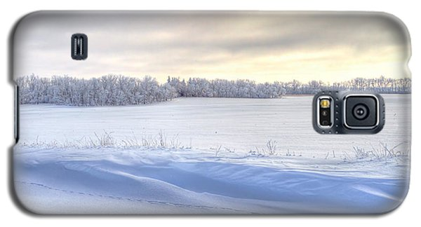 Winter Field Galaxy S5 Case