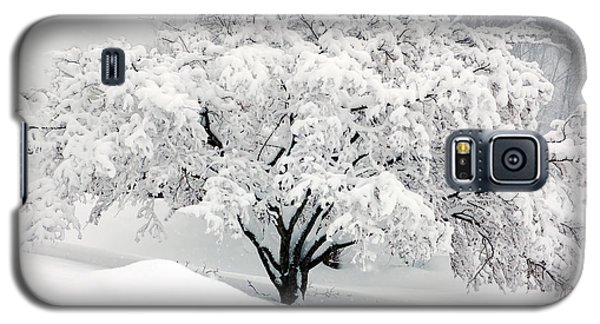 Winter Fluff Galaxy S5 Case by Richard Ortolano