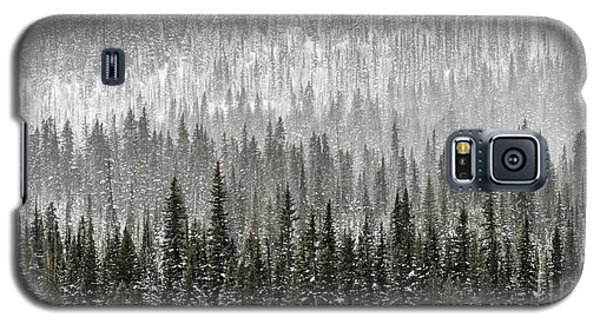 Winter Forest Galaxy S5 Case