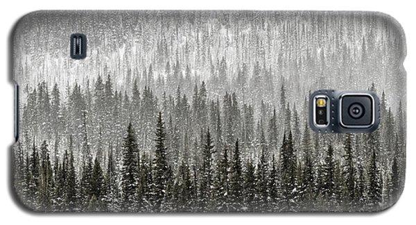 Winter Forest Galaxy S5 Case