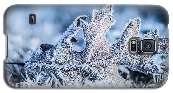 Winter Frost Galaxy S5 Case