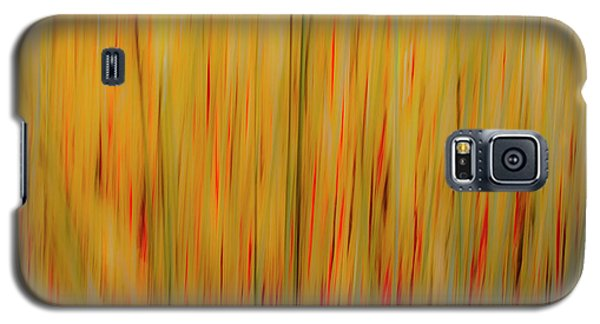 Galaxy S5 Case featuring the photograph Winter Grasses #1 by Tom Vaughan