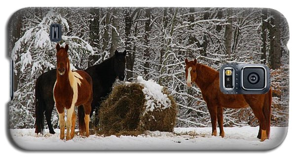 Winter Horses Galaxy S5 Case