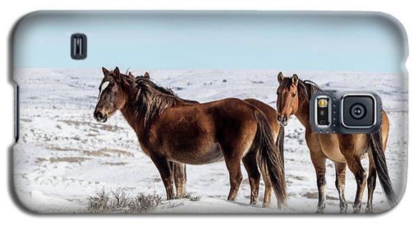 Winter In Sand Wash Basin - Wild Mustangs Galaxy S5 Case