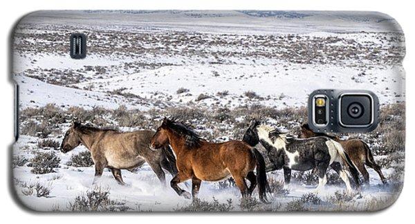 Winter In Sand Wash Basin - Wild Mustangs On The Run Galaxy S5 Case