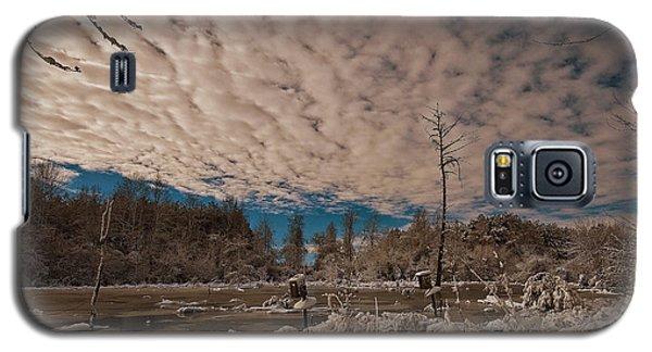 Winter In The Wetlands Galaxy S5 Case