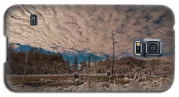 Galaxy S5 Case featuring the photograph Winter In The Wetlands by John Harding