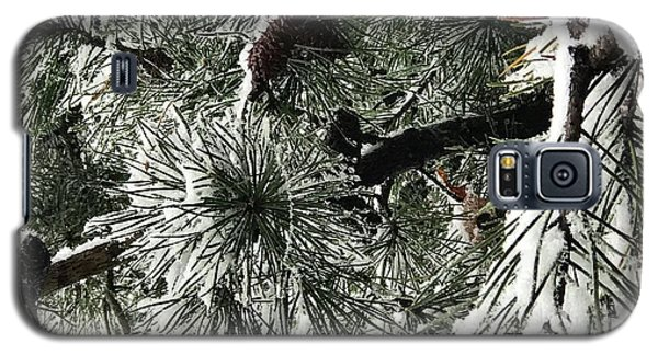 Winter Land  Galaxy S5 Case