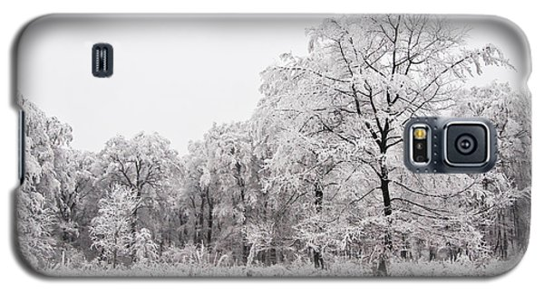 Galaxy S5 Case featuring the photograph Winter Landscape by Gabor Pozsgai