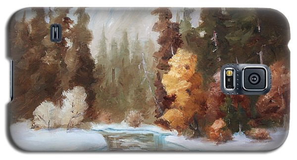 Galaxy S5 Case featuring the painting Winter Landscape Original Oil Painting by Brenda Thour