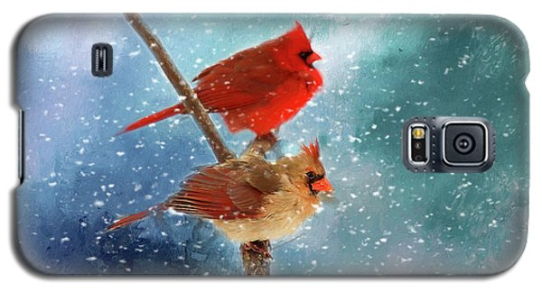 Galaxy S5 Case featuring the photograph Winter Love by Darren Fisher
