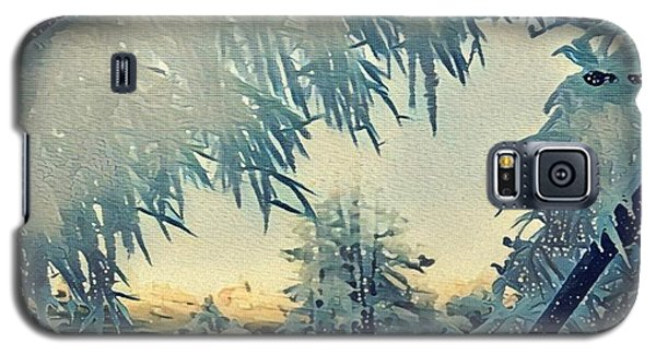 Winter Magic Galaxy S5 Case by Colette V Hera Guggenheim