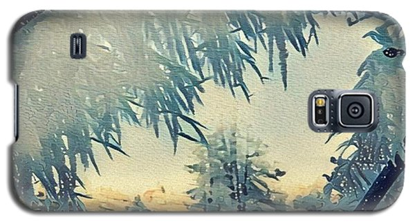 Galaxy S5 Case featuring the photograph Winter Magic by Colette V Hera Guggenheim